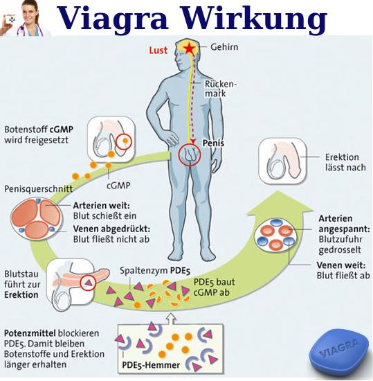 viagra-wirkung